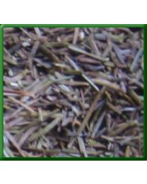 Dried Balsam Needles